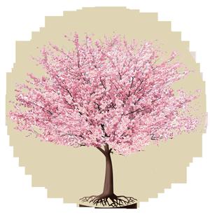 Cerezo Hanami - Terapia Humanista